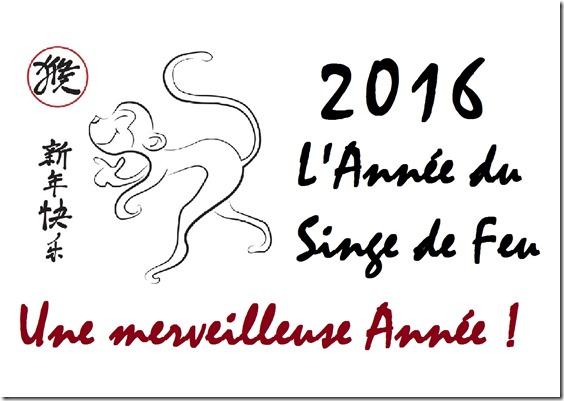 2016 L'année du Singe