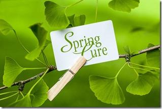 faite une cure de plantes drainantes pour libérer l'énergie de votre foie