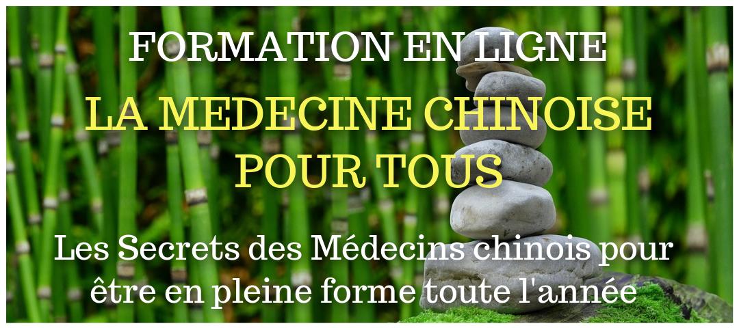Formation en ligne La médecine chinoise pour tous par Eric Delafontaine