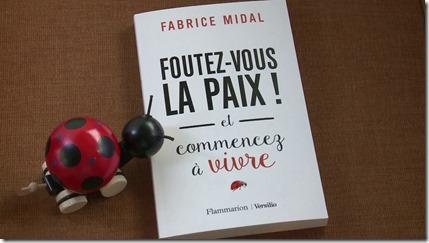 Livre Fabrice Midal Foutez vous la paix