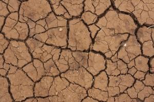 terre argileuse et craquelée