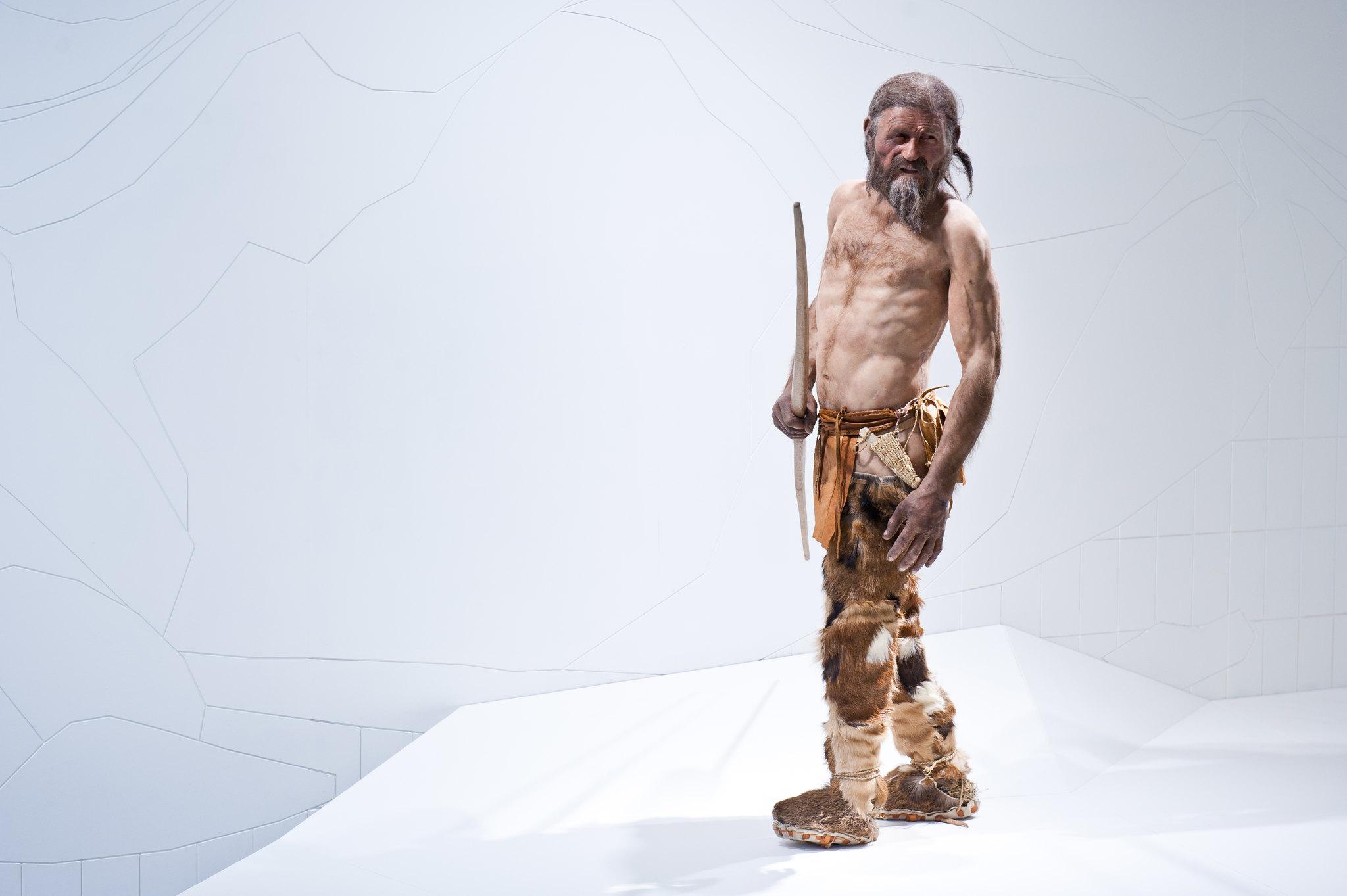Oetzi l'homme des glaces de Bolzano