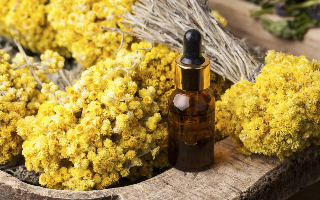 Une huile essentielle de choc : l'hélichryse italienne !