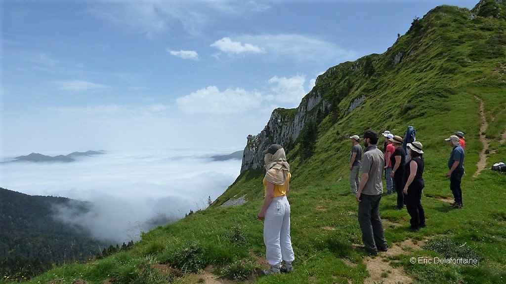 Qi gong et méditation : un groupe au sommet d'une montagne