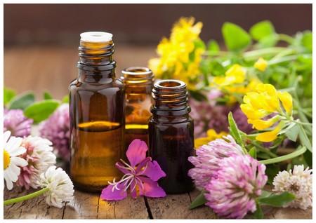 cours huiles essentielles et médecine chinoise par eric delafontaine