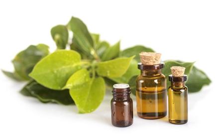 Ravintsara huile essentielle (Cinnamomum camphora)